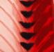 (varis, raudona nugara, juodas stuburas)
